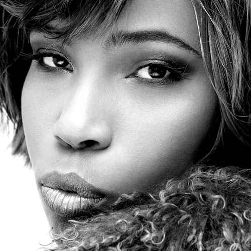 Happy 4th Of July Weekend >> MACY GRAY'S NEW CD: THE SELLOUT | CINEMATIC PASSIONS BY MIRANDA WILDING